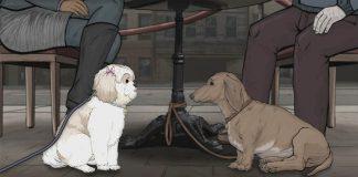 Animals la serie animada de HBO