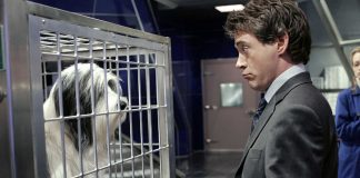 Robert Downey Jr persofinicará al Dr. Dolittle